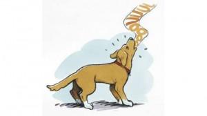 1108 dessin chien aboie